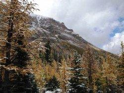 Canyoning Abenteuer in der Tessiner SChlucht Iragna
